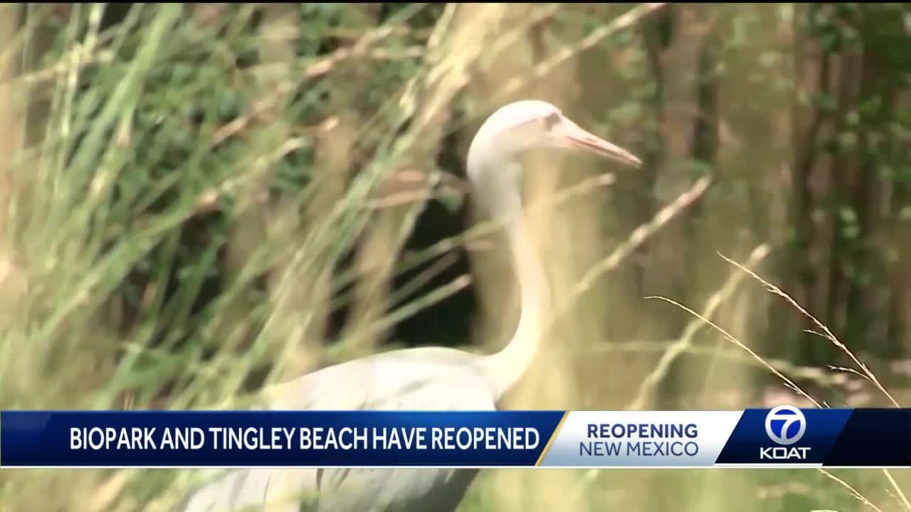ABQ BioPark and Tingley Beach reopening
