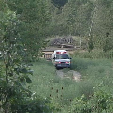 Man dies after tree falls on him