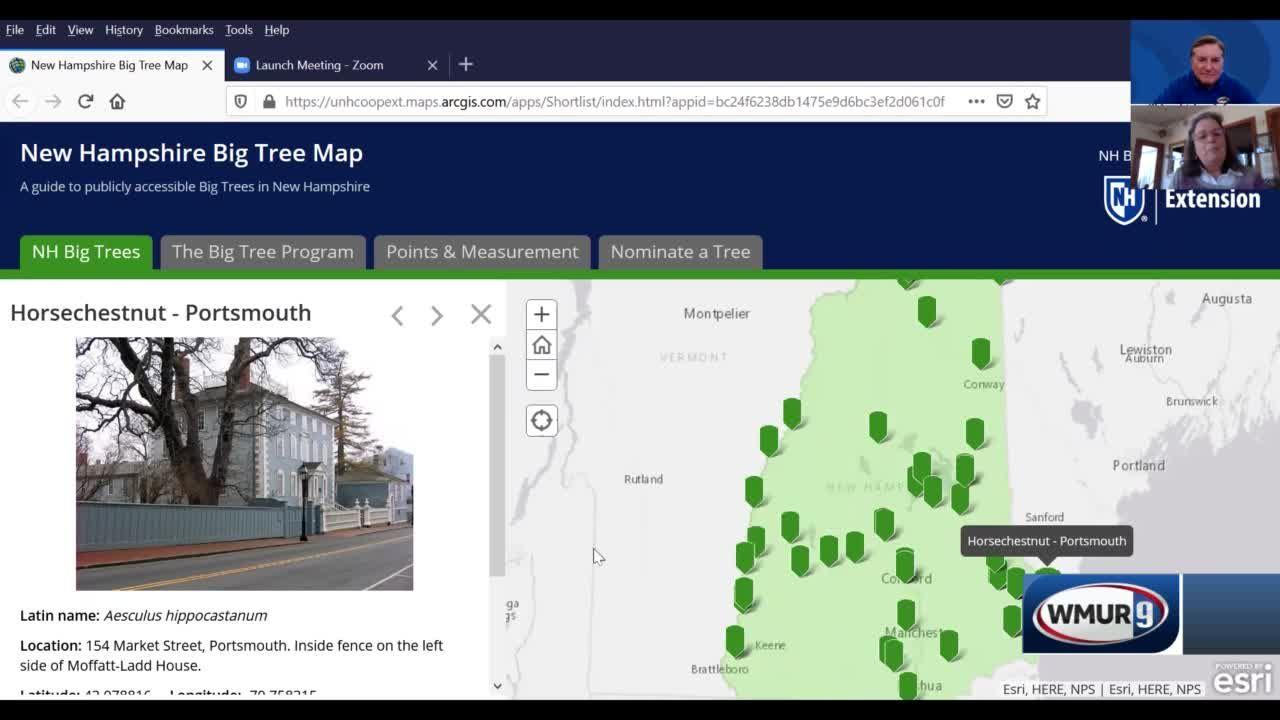 Grow It Green: Big Trees Map
