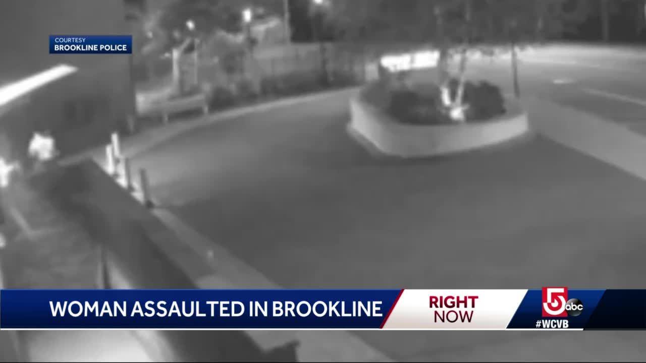 Surveillance camera catches Brookline assault on video
