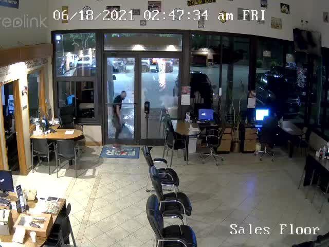 RAW: Dealership shows video of men breaking in