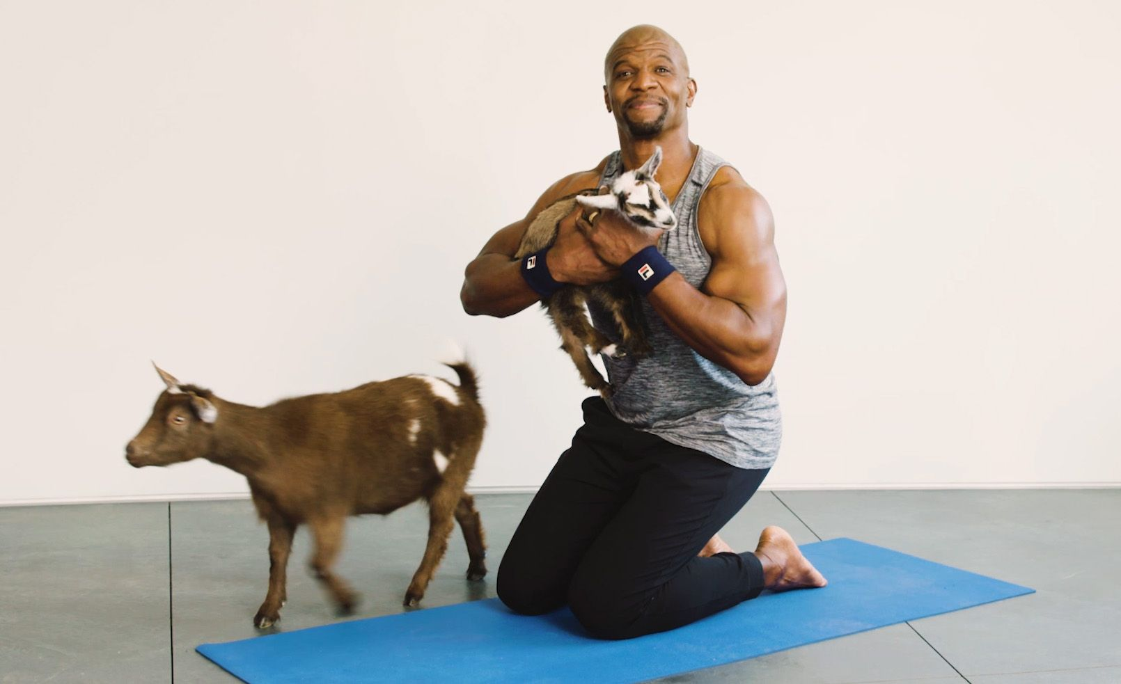Terry Crews Answers Questions While Doing Goat Yoga