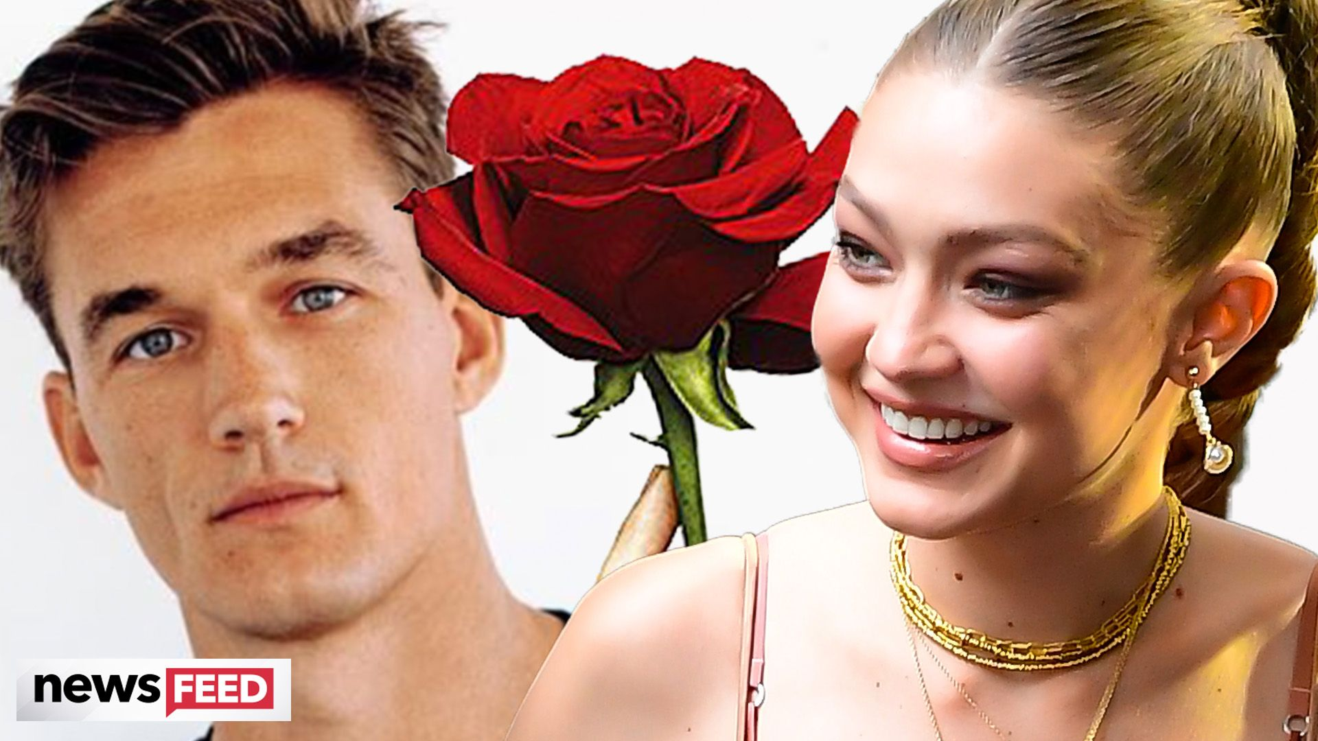 Hannah Brown And Tyler Cameron Haven't Talked Since He Started Dating Gigi Hadid
