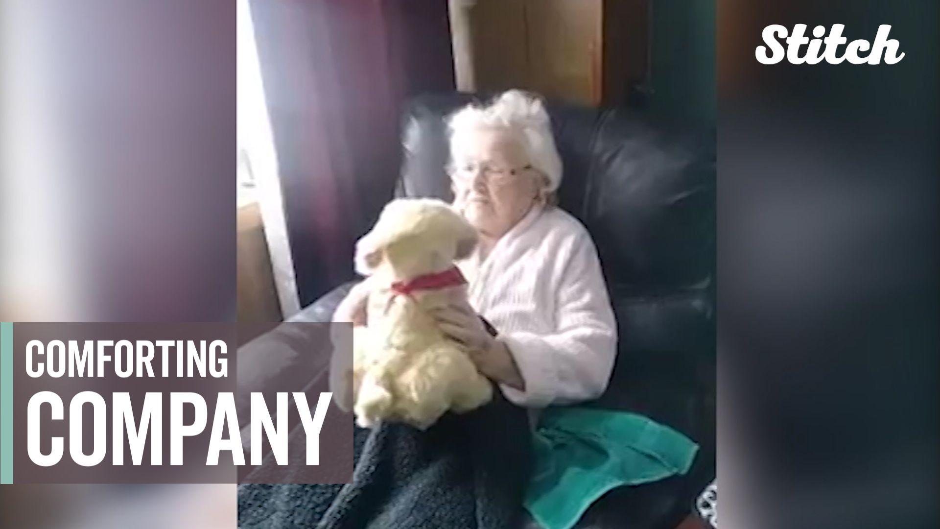 'The day I got it, I cried': Animatronic pets providing company to isolated  seniors