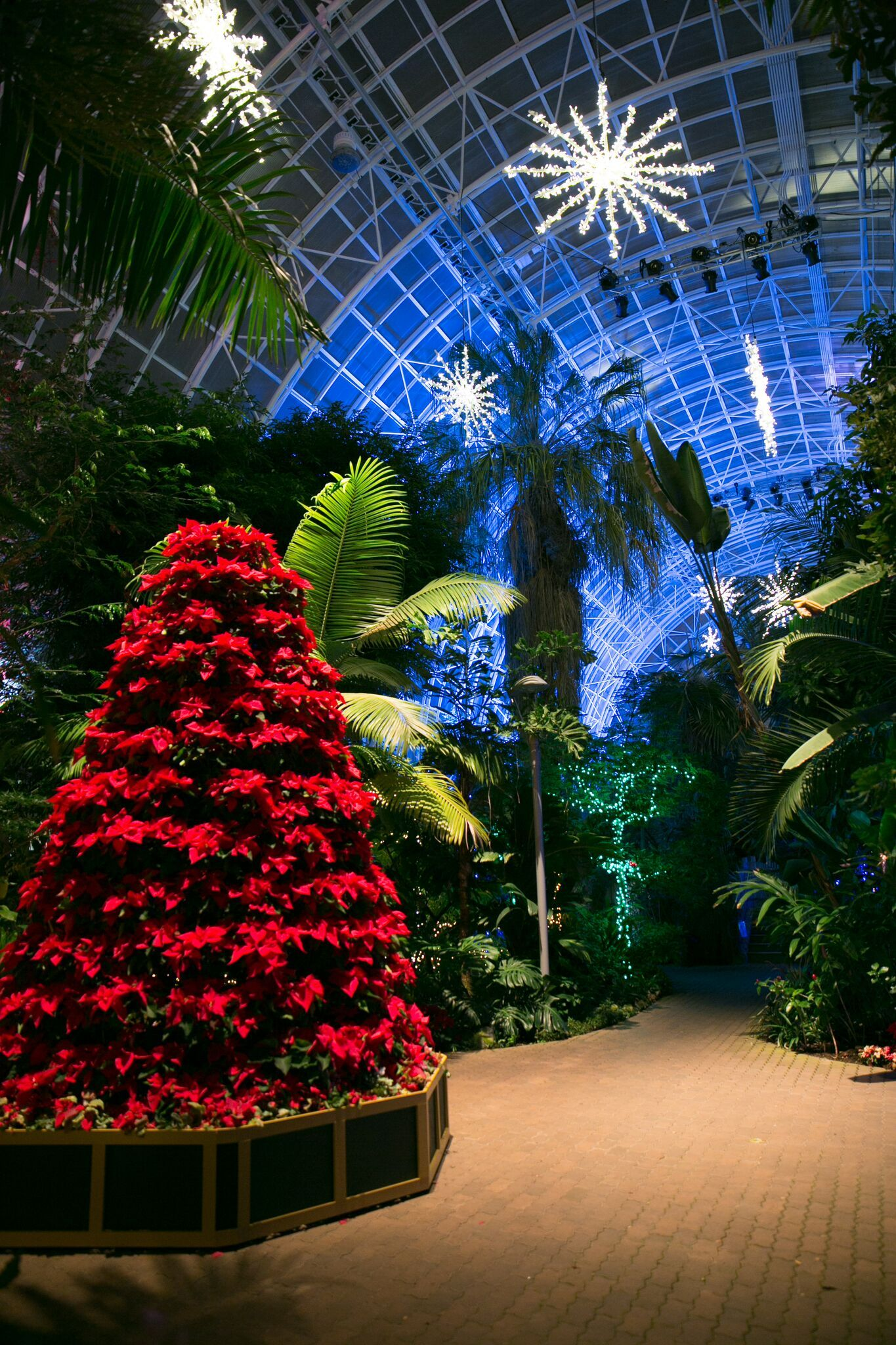 5 hottest holiday happenings in the OKC metro