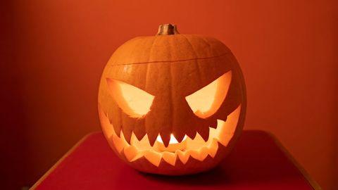 16 Pumpkin Fun Facts - Nutrition and Weird Information About Pumpkins