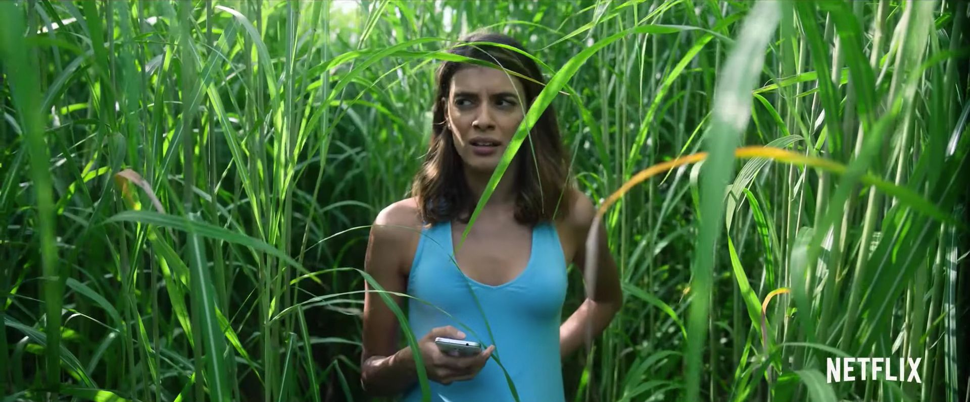 What the hell just happened in Netflix's In The Tall Grass?