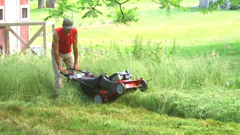 Best Lawn Mowers 2019- Electric and Gas Mower Reviews