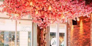 Restaurante Juno Rooms, Londres