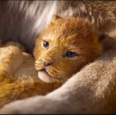 The Lion King Director Reveals The Biggest Change From The