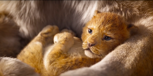 Live-action The Lion King trailer screengran