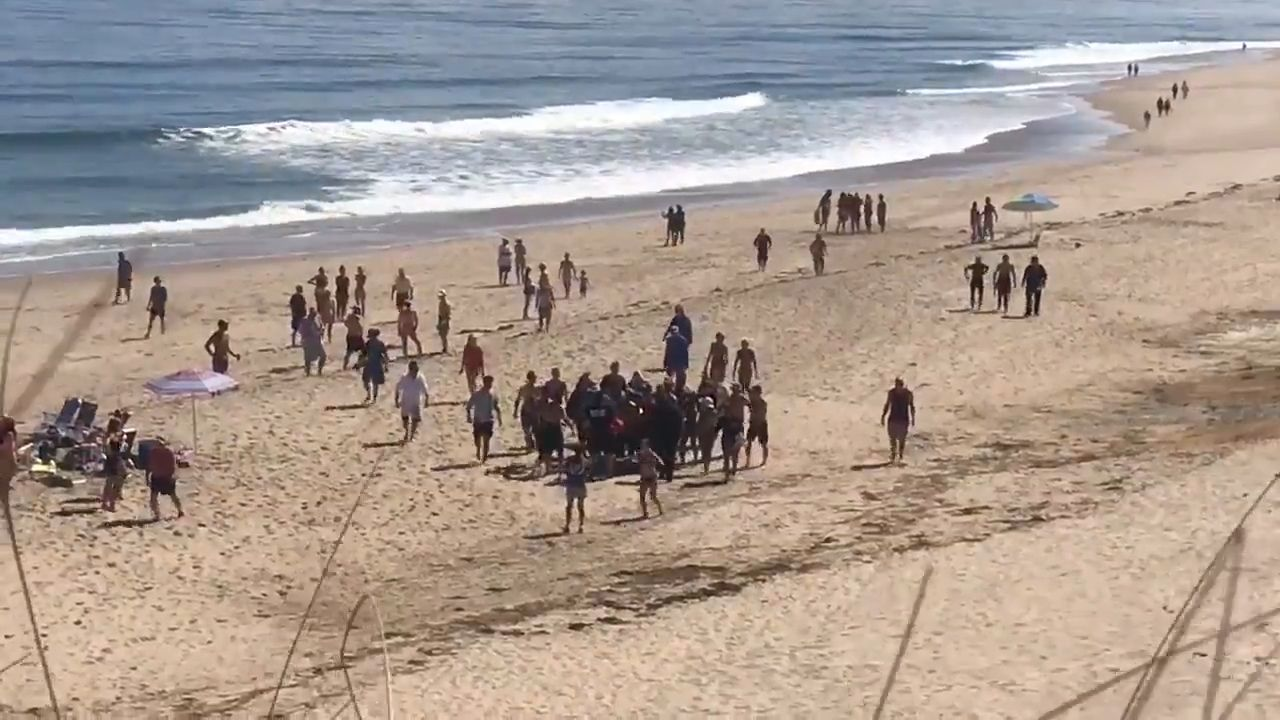 Video shows people responding to Wellfleet shark attack victim