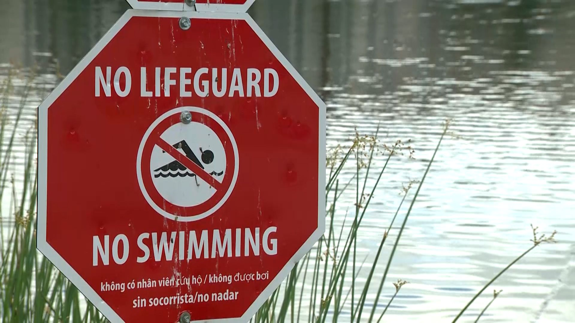 Teenage lifeguard stabbed in Worcester for enforcing rules; 4 people arrested by police