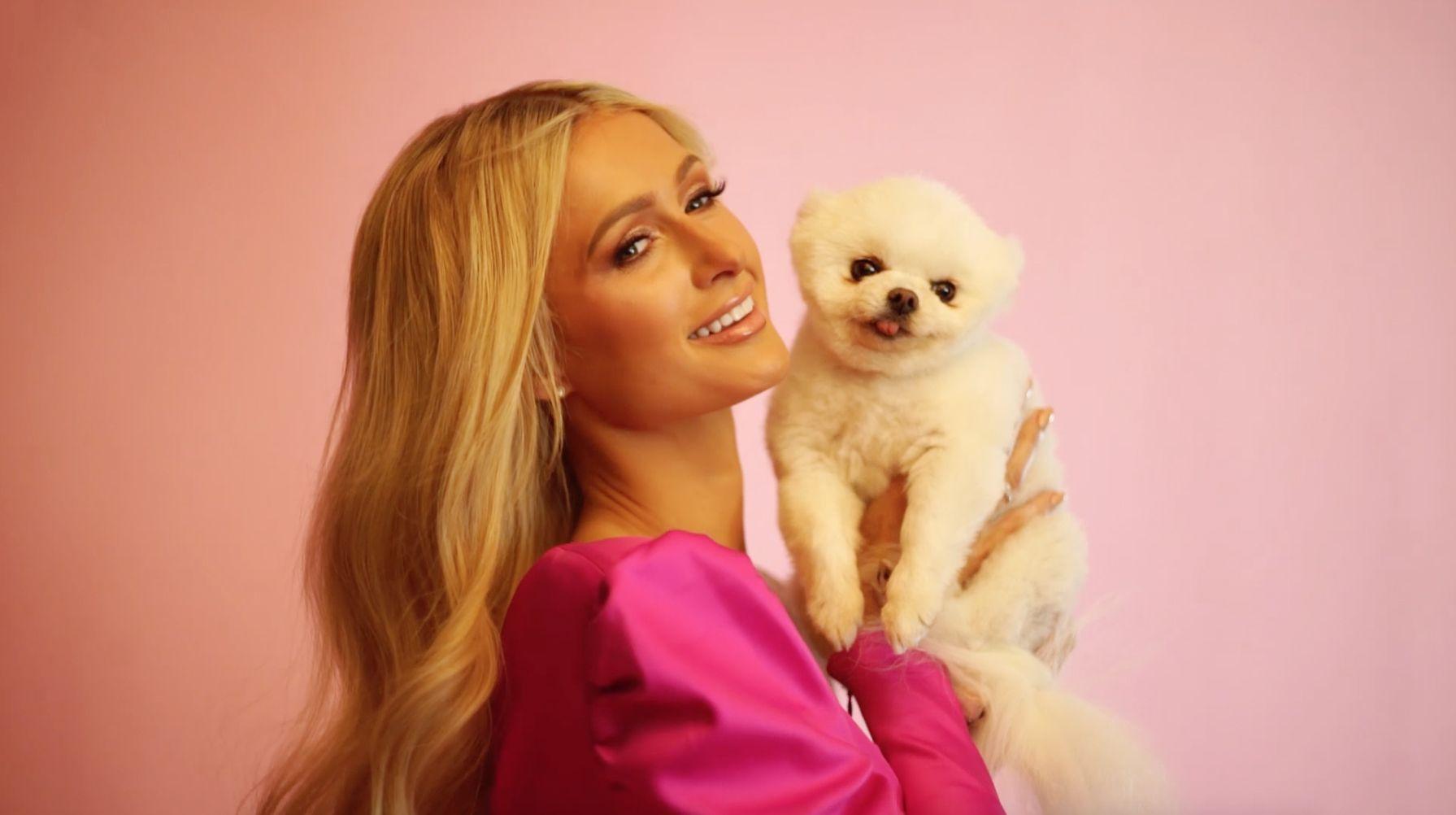 Conoce A Los Bebés De Paris Hilton Sus Perros