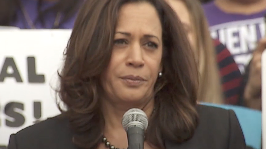 Everything You Need to Know About Kamala Harris's Policies Before the Election