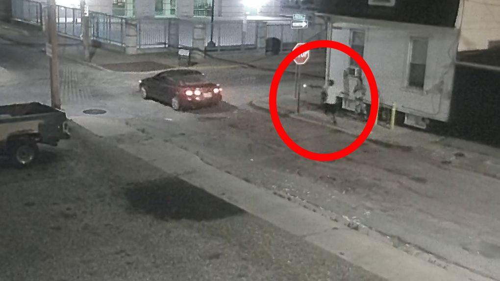 SURVEILLANCE VIDEO: York, Pa., homicide on June 20, 2021