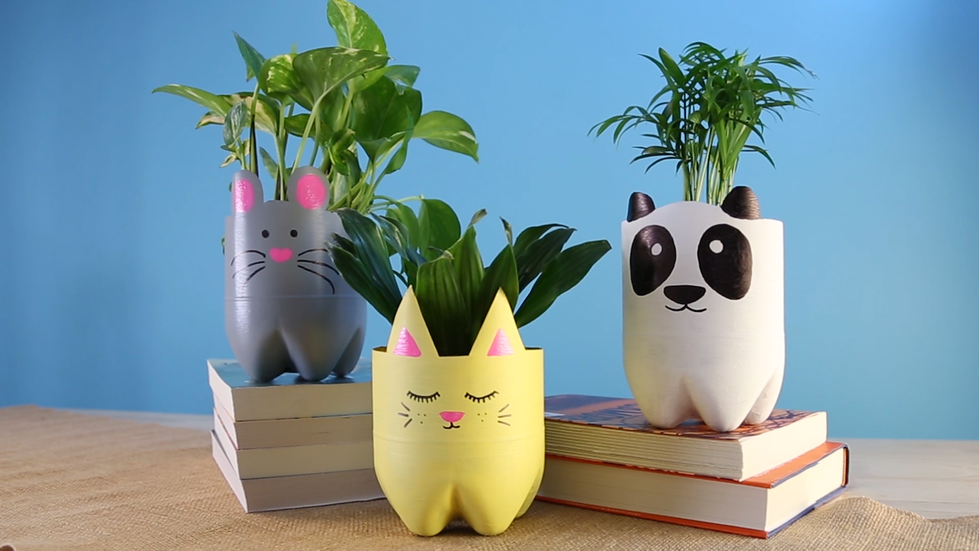 How to Upcycle Empty Soda Bottles Into Adorable Animal Planters