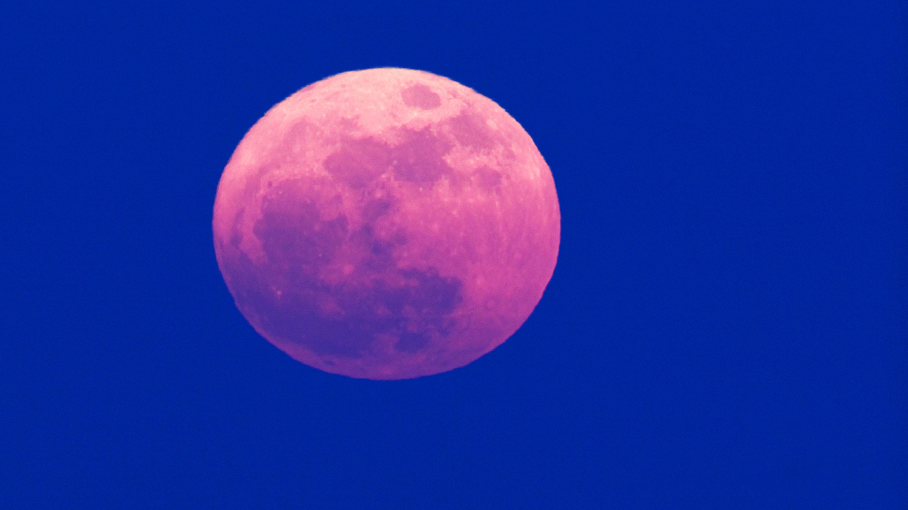 pink moon, April's Pink Moon is happening this Friday
