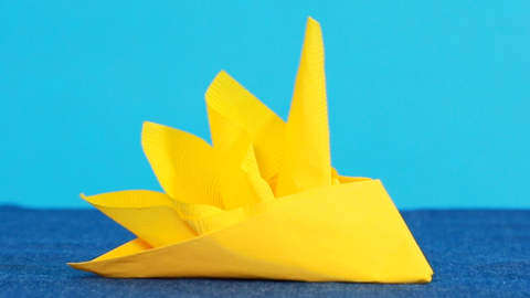 11 Best Napkin Folding Ideas How To Fold Fancy Napkins Videos
