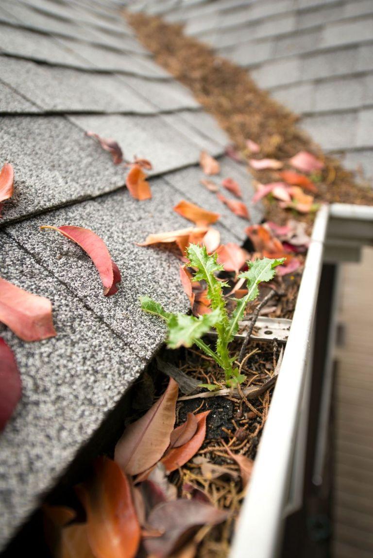 Home Repair Home Improvement Tips