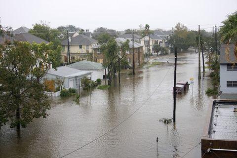 Event, Neighbourhood, Tree, Flood, Residential area, Floodplain, Geological phenomenon, River, Riparian zone, Palm tree,