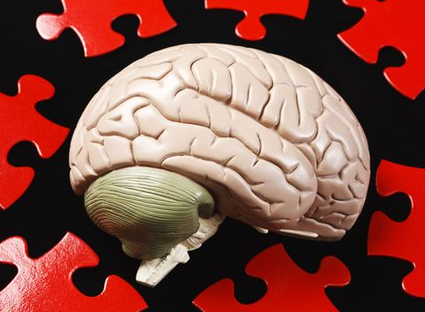 Brain with Puzzle Pieces