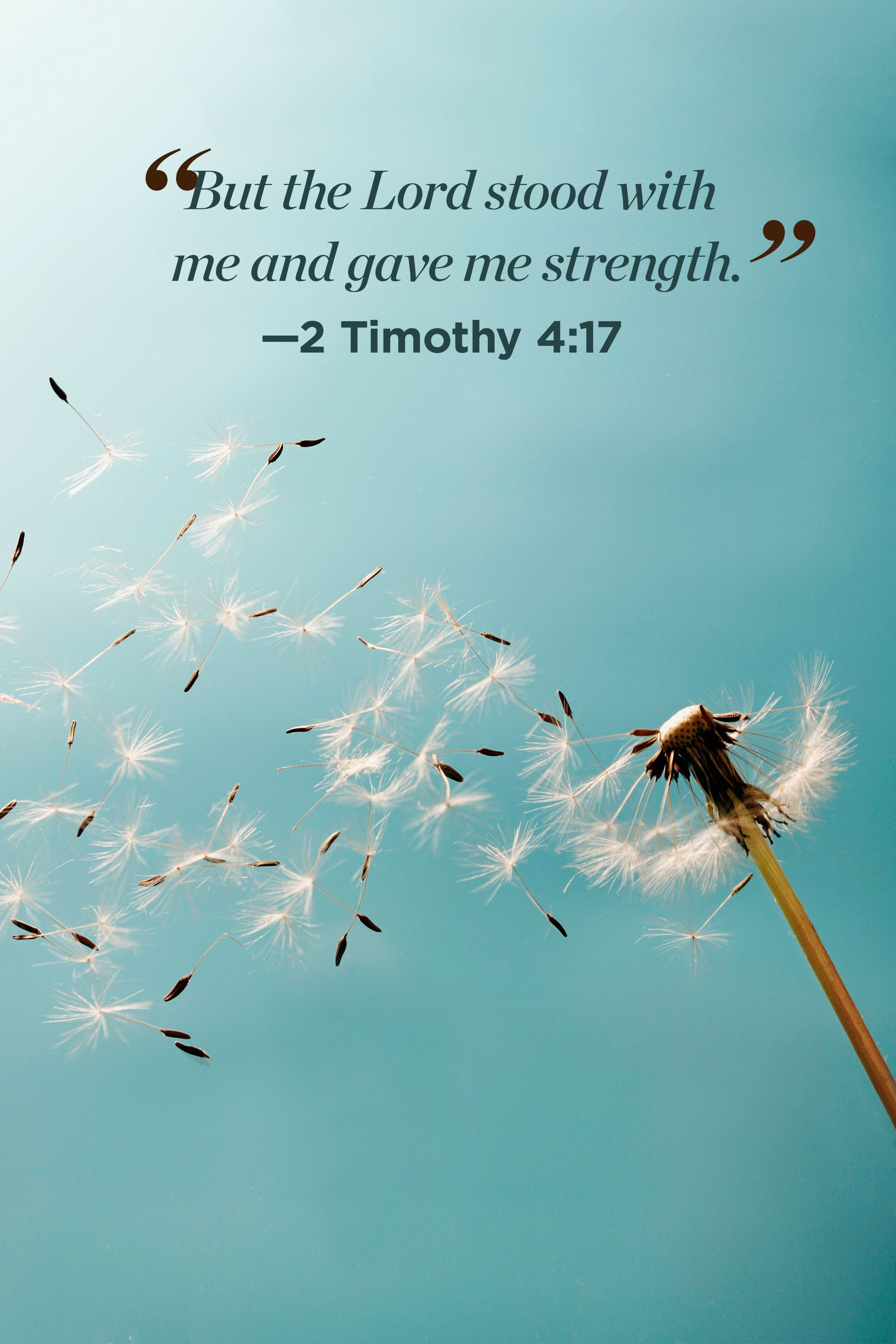 30 Inspirational Bible Quotes About Life Scripture Verses Of The Day