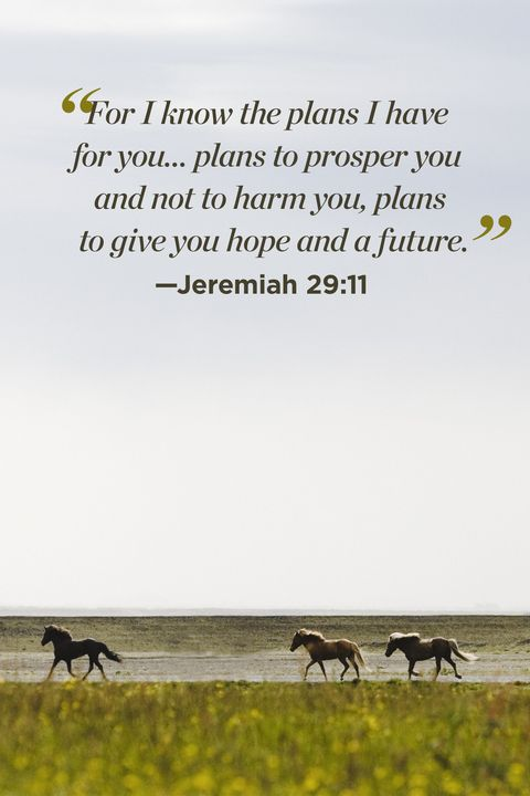 30 Inspirational Bible Quotes About Life - Scripture Verses ...
