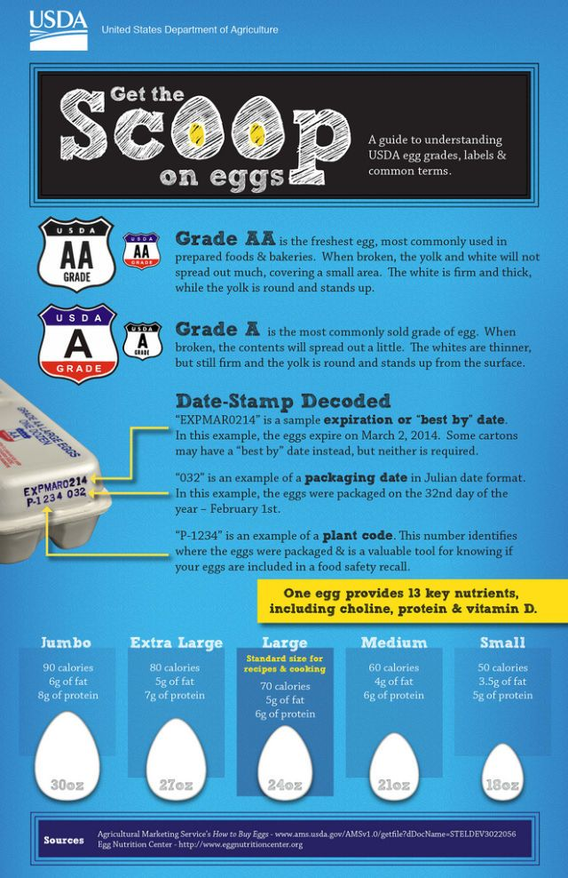 Understanding USDA Egg Grades, Labels & Common Terms