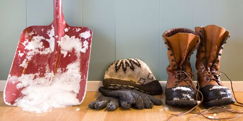 Brown, Boot, Carmine, Tan, Turtle, Maroon, Work boots, Leather, Reptile, Still life photography,