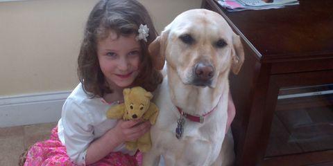 Human, Skin, Dog, Dog breed, Carnivore, Mammal, Sitting, Baby & toddler clothing, Companion dog, Fawn,