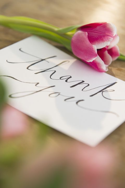 Petal, Cut flowers, Artificial flower, Paper, Handwriting, Paper product, Calligraphy, Floral design,