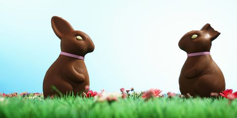 Rabbits and Hares, Rabbit, Domestic rabbit, Hare, Animation, Easter bunny, Grass, Plant, Fawn, Animal figure,