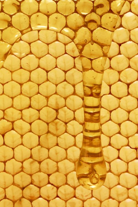 Natural Hair Treatment - Honey