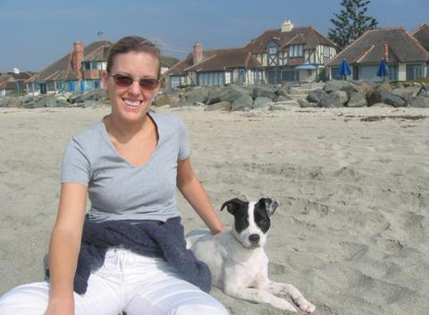 Eyewear, Vision care, Dog breed, Glasses, Sunglasses, Dog, Goggles, Carnivore, Summer, Vacation,