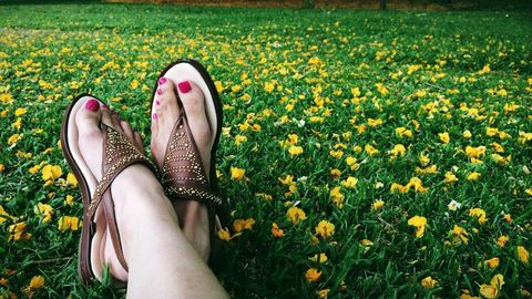 Grass, Yellow, Flower, People in nature, Foot, Spring, Slipper, Flowering plant, Meadow, Groundcover,