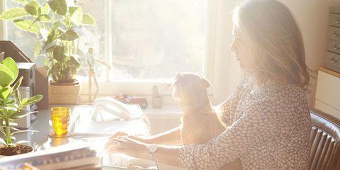 Human body, Mammal, Sitting, Comfort, Sunlight, Houseplant, Flowerpot, Long hair, Plate, Cup,