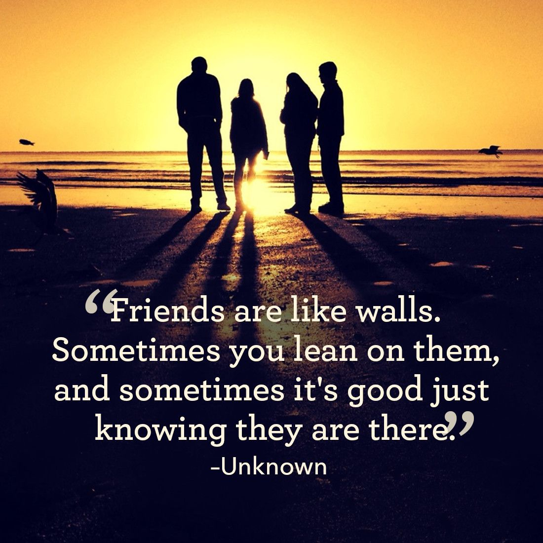 Quotes About Friendship Quotes About Family