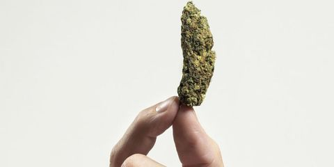 Finger, Leaf, Thumb, Natural material, Mineral, Weed, Hemp family,