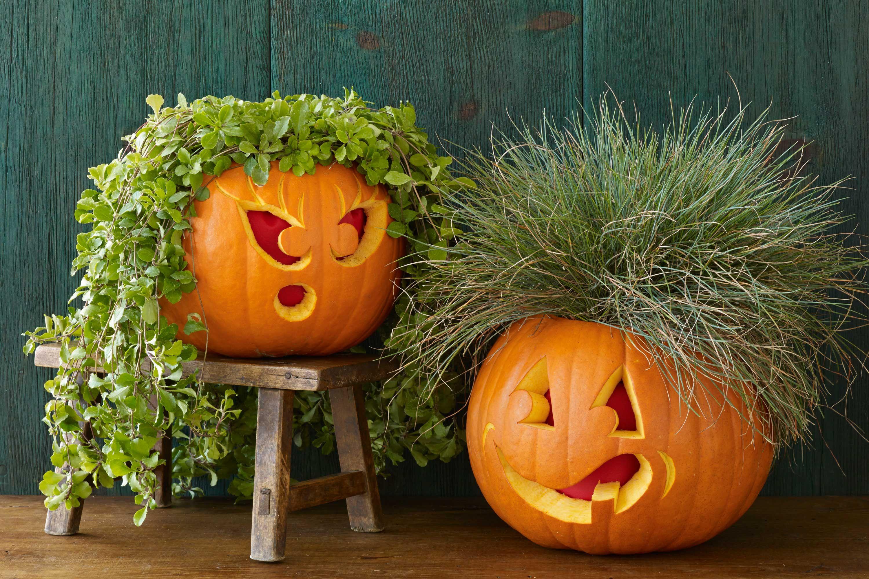 65 Best Pumpkin Carving Ideas Halloween 2017 Creative Jack o