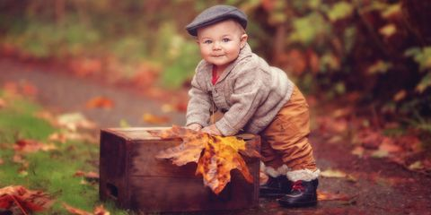 Leaf, People in nature, Baby & toddler clothing, Toddler, Autumn, Deciduous, Child model, Boot, Portrait photography, Stock photography,