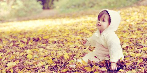 Cheek, Leaf, Happy, People in nature, Child, Baby & toddler clothing, Deciduous, Autumn, Toddler, Baby,