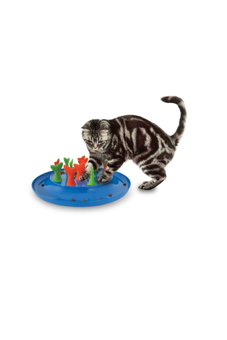 33 best dog and cat gifts best christmas pet gift ideas for Cats go fishing