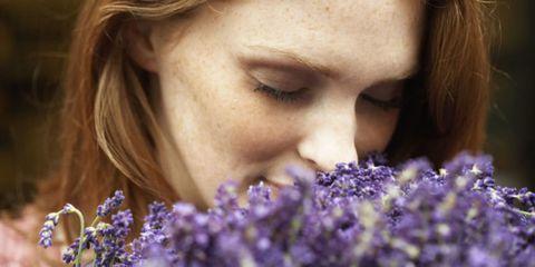 Eyebrow, Lavender, Eyelash, Purple, Organ, Lavender, Beauty, Violet, Brown hair, Close-up,