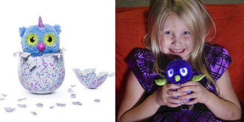 Purple, Violet, Toy, Lavender, Bangs, Magenta, Serveware, Stuffed toy, Bird, Bird of prey,