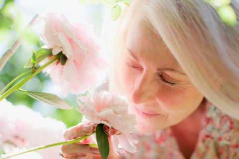 Lip, Cheek, Petal, Skin, Flower, Pink, Flowering plant, Eyelash, Insect, Beauty,