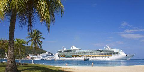 Cruise ship, Natural environment, Passenger ship, Arecales, Horizon, Ocean, Naval architecture, Liquid, Aqua, Watercraft,