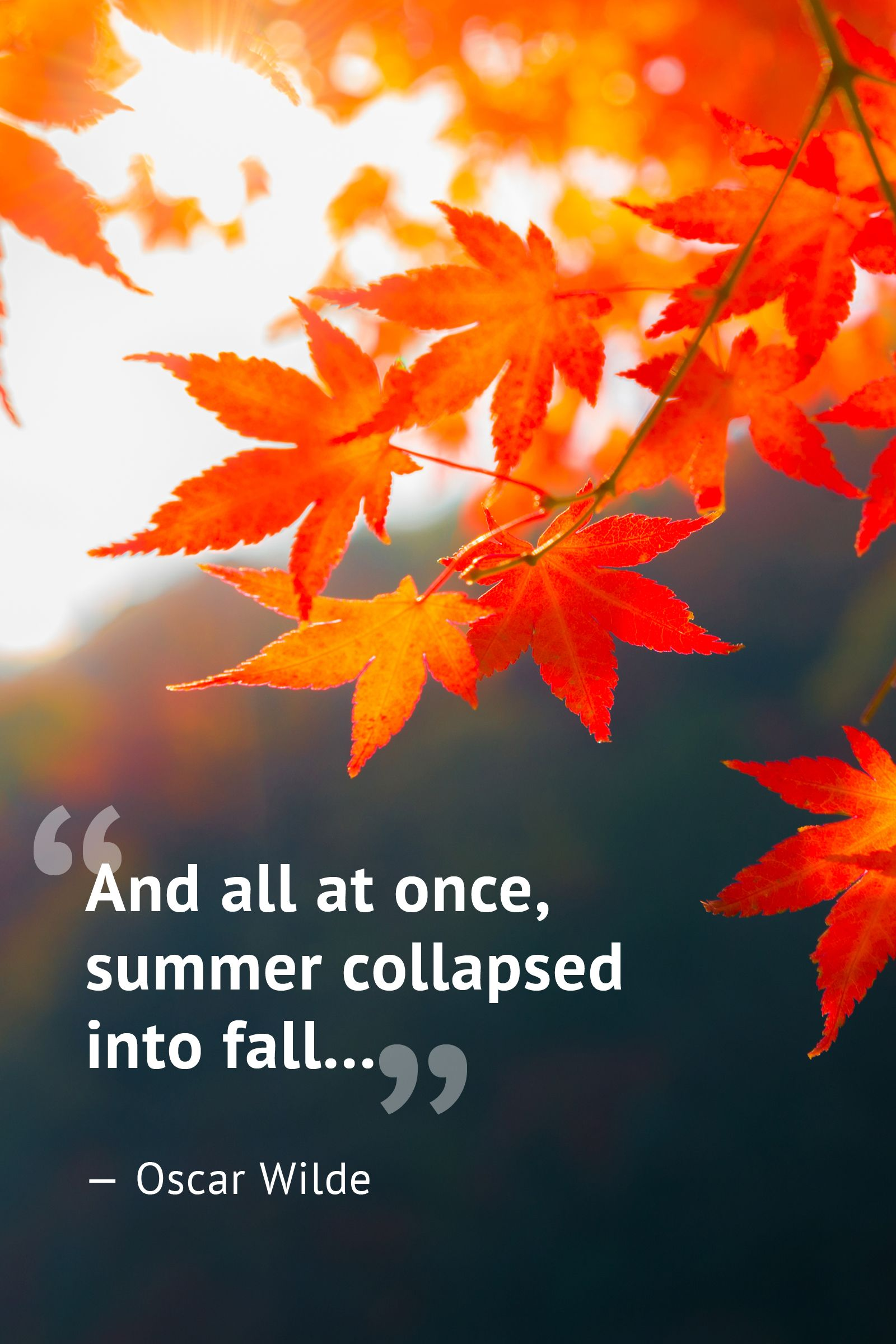 Citaten Herfst Free : 10 beautiful fall quotes best sayings about autumn