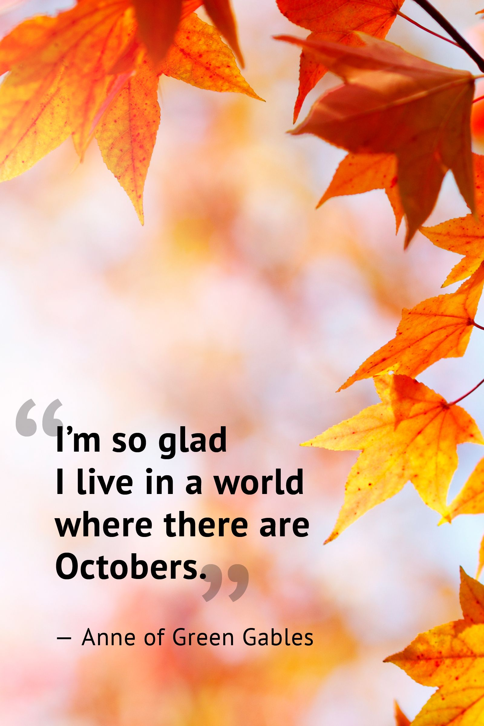 Kids Say: Funny Autumn Sayings