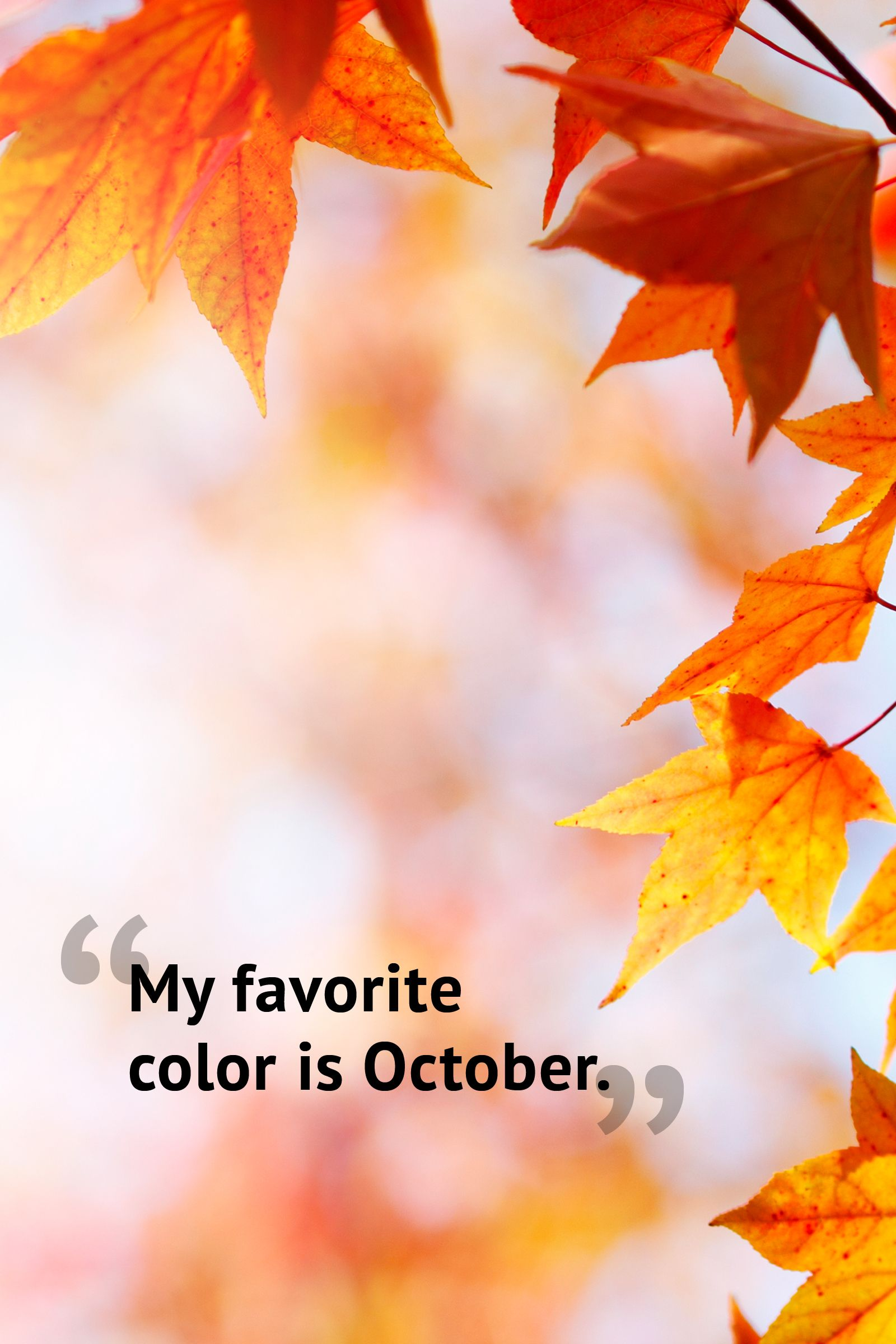 10 Beautiful Fall Quotes Best Sayings About Autumn